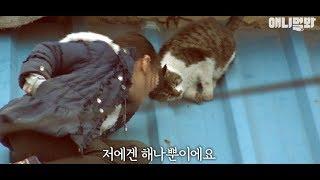 상처받은 고양이에게 새로운 세상을 선물해준 소녀 ㅣ Girl Who Gave A Heartbroken Cat A Whole New World