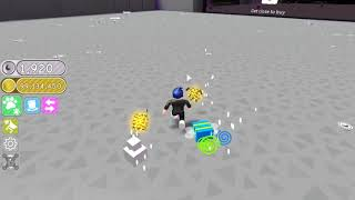 ROBLOX SPENT $5,000,000,000 TO GO INTO SPACE - Pet Simulator