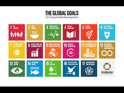 Bringing Home the Global Goals: How do the SDGs affect Sweden?