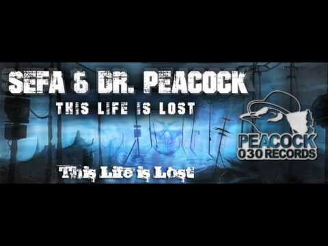 Dr. Peacock & Sefa - This Life is Lost [High Quality]