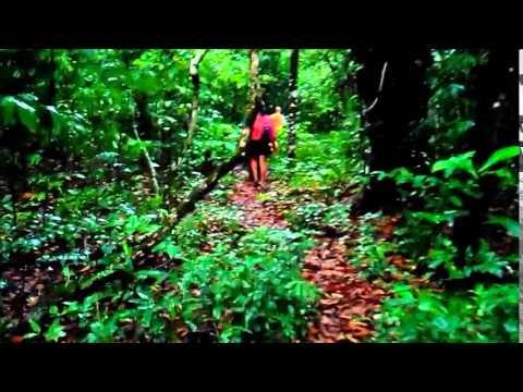 Parque Nacional Corcovado 2015