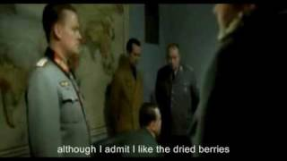 Hitler Finds out his holiday is cancelled... (Hitler Parody, Funny)