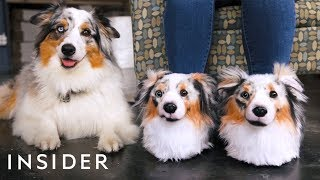 Custom Slippers Look Identical To Your Pet
