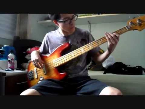 The Rolling Stones - Wild Horses [bass cover by Renan]