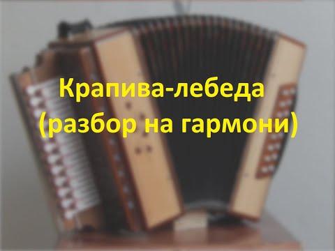 Крапива-лебеда(разбор на гармони)