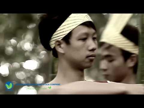 Giới thiệu Công ty Cổ phần Dược liệu Việt Nam   VietMec   YouTube