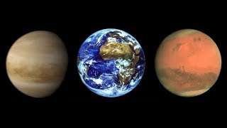 Пякин В.В. На Венере и Марсе была жизнь?
