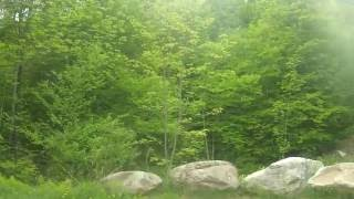 Green Mountain National Forest FSR30 Primitive Camping