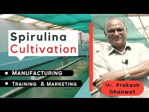 Spirulina Cultivation : Manufacturing, Training  and Marketing