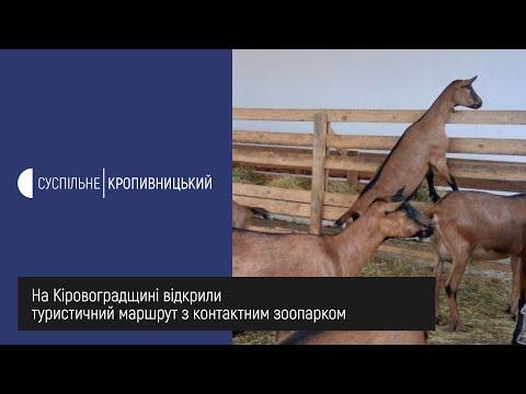 Суспільне Кропивницький: На Кіровоградщині відкрили туристичний маршрут з контактним зоопарком