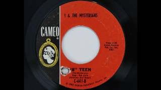 And The Mysterians 8 Teen Cameo 441