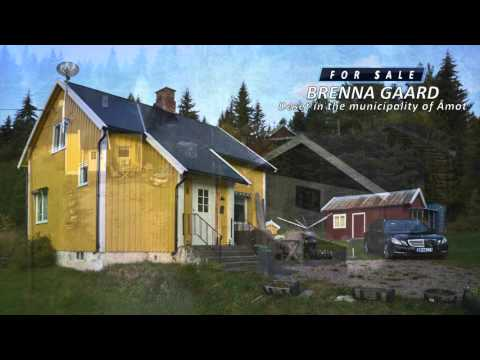 Small farm for Sale in Rena - Deset in Åmot Norway - English version  - Olaf Rudolfsen