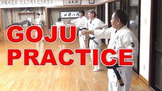 A daily GOJU-ryu PRACTICE |Meibukan Masaaki Ikemiyagi|剛柔流道場の日々の鍛錬