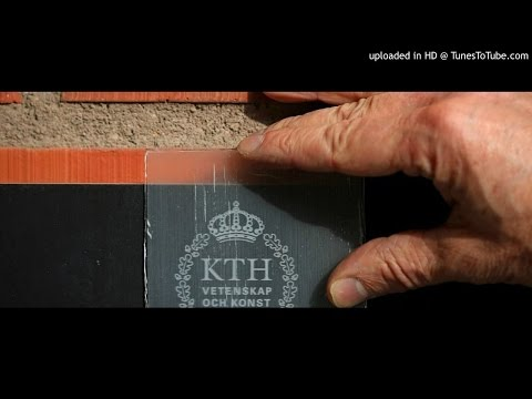 Scientists have developed 'transparent wood' that can build windows, solar cells