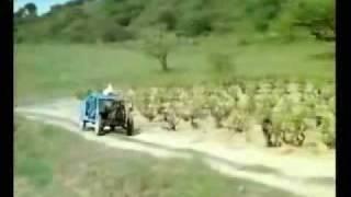 Le gendarme et les gendarmettes