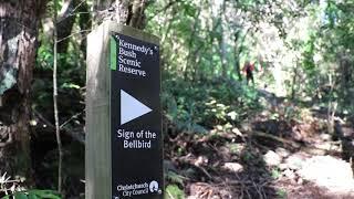 """ニュージーランドトレッキング """"Sign of the Bellbird and Kennedys bush"""" Day walk in Canterbury New Zealand"""
