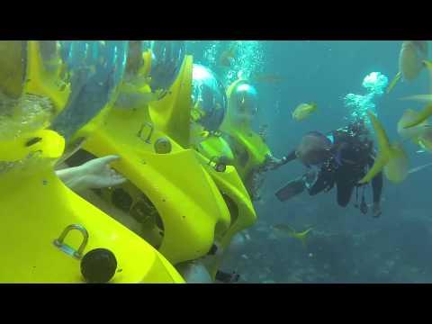 Stuart Cove's Subs Nassau Bahamas
