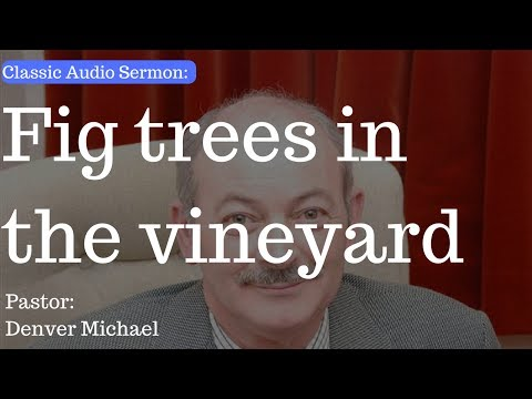 (Classic Audio Sermon) Fig trees in the vineyard - Pastor Denver - Cullybackey Elim Church