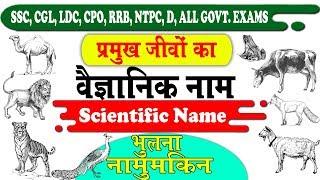 Science Gk Tricks : Scientific Names of Animals | जानवरों का वैज्ञानिक नाम in Hindi and English