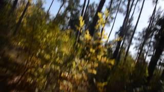 Кучугуры   бабье лето