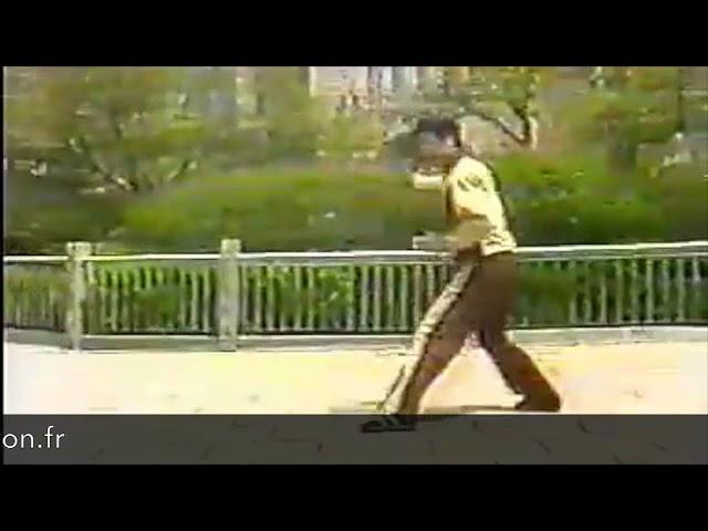 Zhang Lian En - Tai Chi style Chen Xinjia Erlu Paochui [陈氏太极拳新架 Taijiquan style Chen]