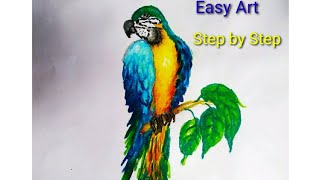 macaw drawing yellow easy draw bird
