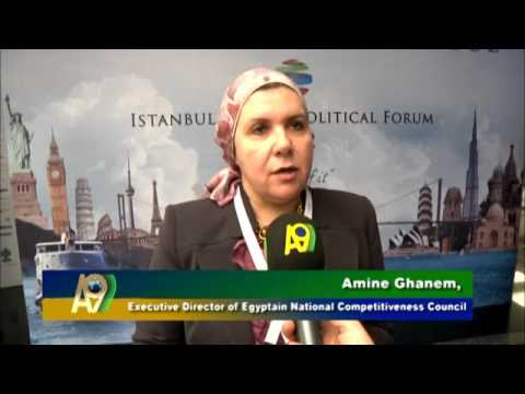 Executive Director of Egyptain National Competitiveness Council,...