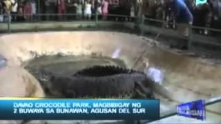 Davao Crocodile Park, magbibigay ng 2 buwaya sa Bunawan, Agusan Del Sur