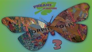 Elevated Artistic Revelation! - MORPHOPOLIS - Part 3 [Freaks Of Nature]