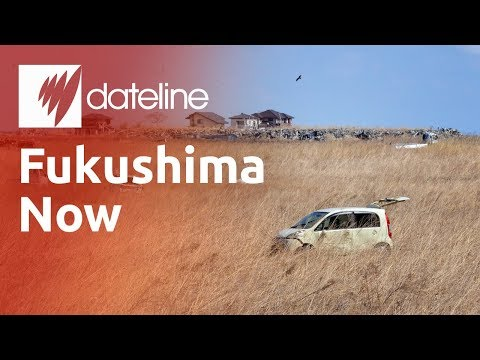 Fukushima - After The Disaster