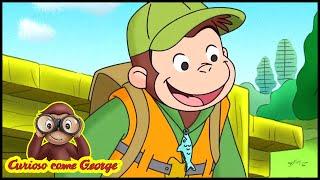 Curioso come George 🐵Dobbiamo essere amici 🐵Cartoni Animati per Bambini 🐵Stagione 7