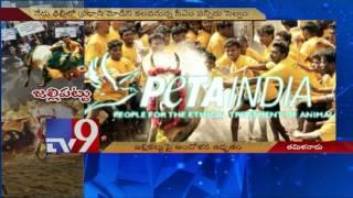 Tsunami of protests against Jallikattu Ban in TN - TV9
