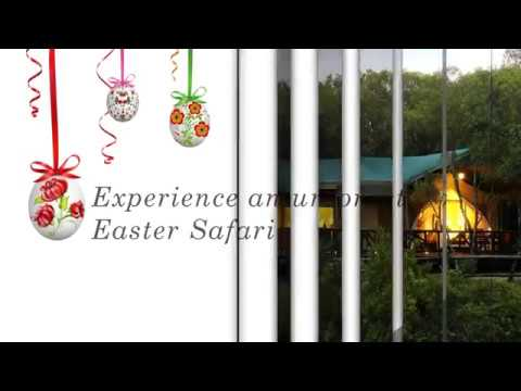 Easter at Mara - Fairmont Mara Safari Club (Growthpad Animation Studios)