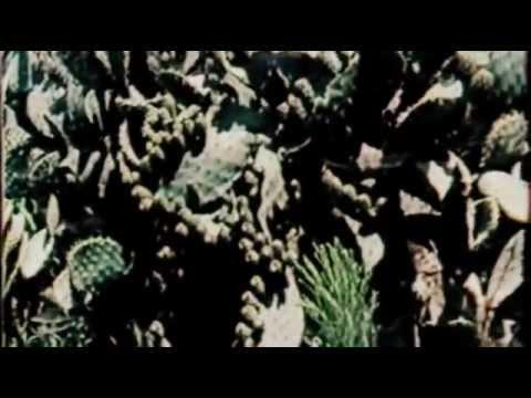 Sardegna Cinema - Violentata sulla sabbia 1971