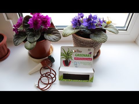 Автополив растений из Fix Price за 50 рублей без батареек / Auto-watering Plants Without Batteries