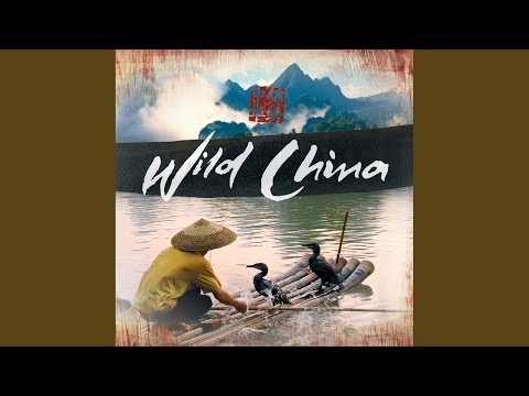Wild China Theme feat. The BBC Concert Orchestra and the UK Chinese Ensemble