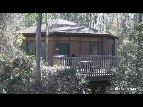 Saratoga Springs Resort & Spa ROOM TOURS - TREEHOUSE VILLAS - Walt Disney World Florida
