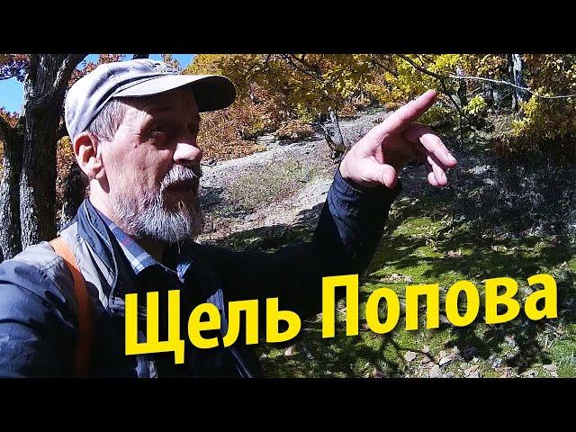 Поход по грибы   Скала Кумпанова - щель Попова