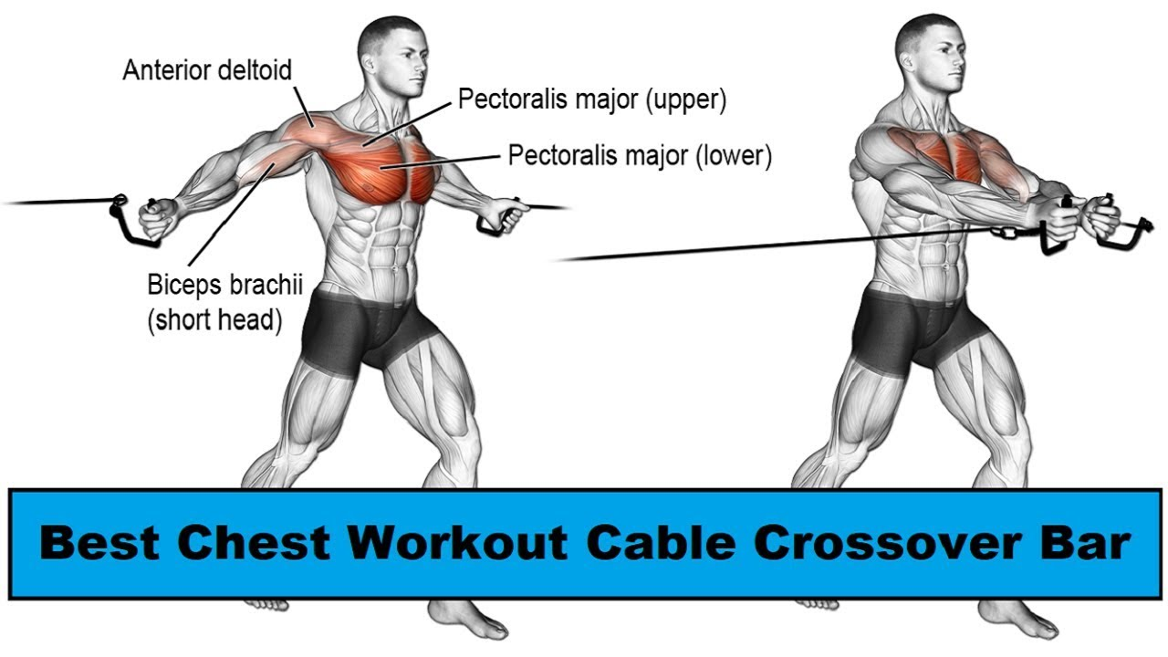 Upper Chest Workout With Cables Blog Dandk