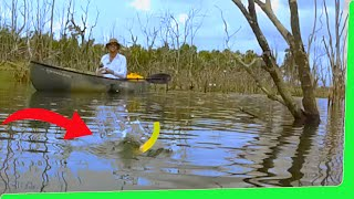 Catch and Cook   Snake Lollie / Candy Fishing Challenge   EP.357