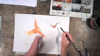 Red kite Master 02