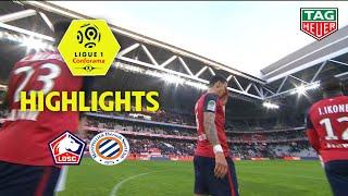 LOSC - Montpellier Hérault SC ( 0-0 ) - Highlights - (LOSC - MHSC) / 2018-19