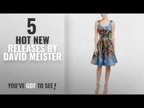 Hot New David Meister Women Clothing [2018]: David Meister Womens A-Line Dress, 14, Blue