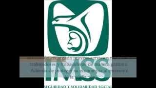 IMSS (Instituto Mexicano del Seguro Social)