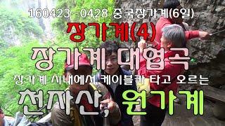 중국 장가계(4)장가계 무릉원 대협곡 무릉원 천자산 원…