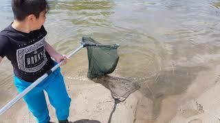Рыбалка в греции на сома