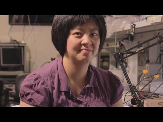 Faculty Profile: Ellis Meng