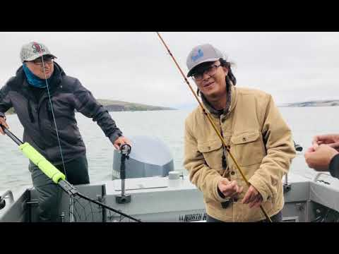 Tomales Bay Halibut Fishing 2020 Limit Out !