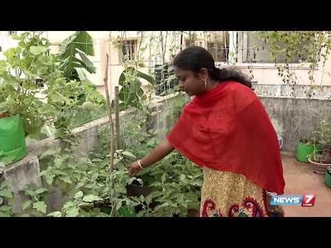 organic terrace garden is heaven forever | Poovali | News7 Tamil