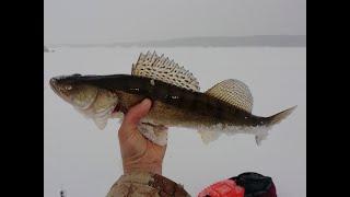 Февраль рыбалка Руза